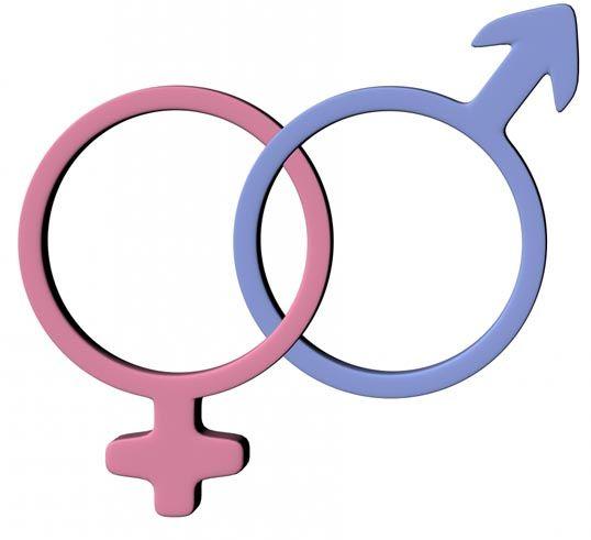 Par dzimumaudzināšanu. Kā un kāpēc par to jārunā?